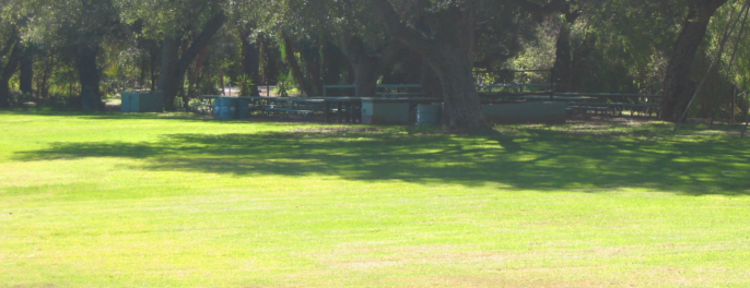 Kenny Grove Open Space and Group Area