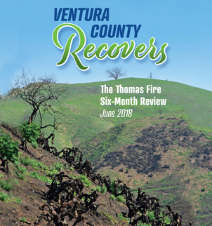 Ventura County Recovers