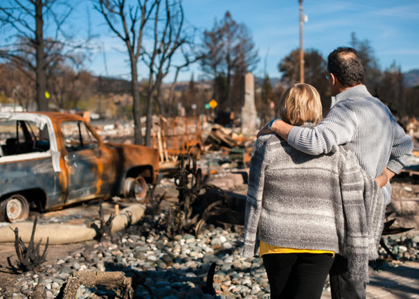 Free Roadmap to Fire Recovery