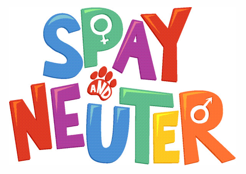$10 Spay & Neuter Clinics!