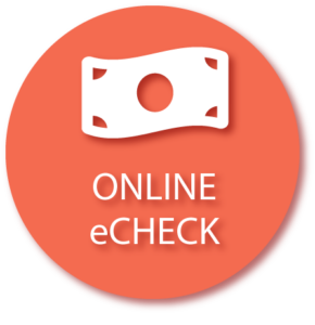 Online e Check