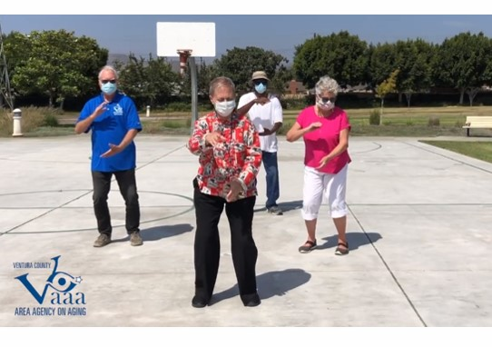 2020 VCAAA Virtual Fall Prevention Forum!