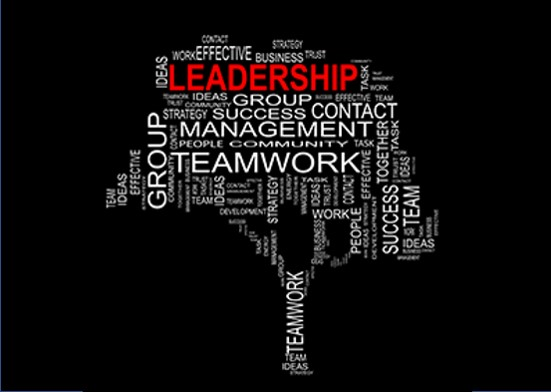 Purposeful Leadership: Harness the Power of your Brand, Team, and Cause